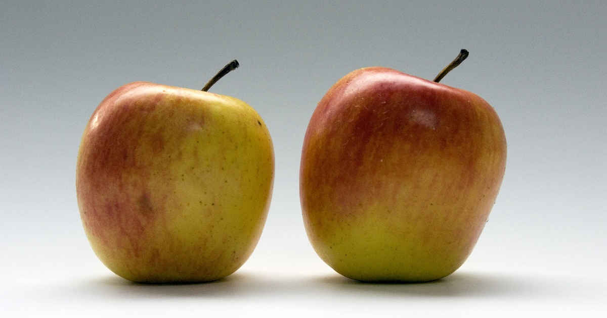 Due mele come due presentazioni di PowerPoint