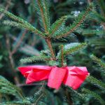Albero di Natale con fiocco